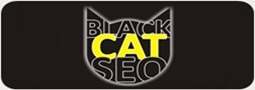 Black Cat Seo